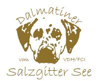 dalmatiner-vom-salzgittersee